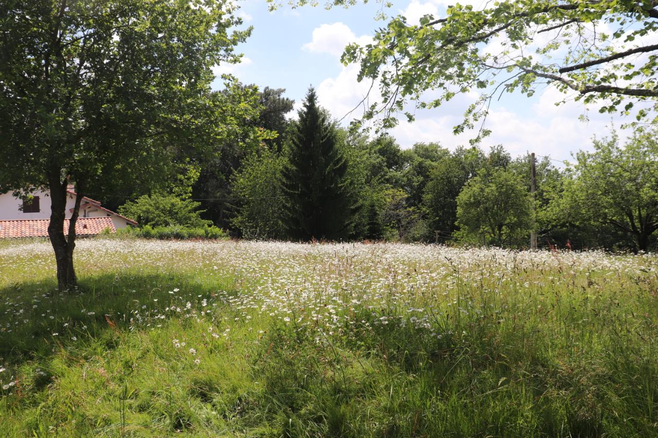 Terrain Saint-geours-d'auribat